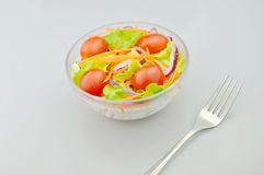 Salade voor het eten Royalty-vrije Stock Afbeelding