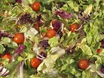 Saladeachtergrond Stock Afbeelding
