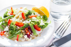 Saladebroccoli en slabonen royalty-vrije stock foto