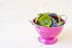 Saladegreens en Spinazie Stock Foto
