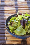 Saladegreens en Spinazie Stock Foto's