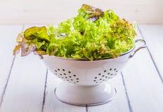 Salademengeling Stock Afbeelding