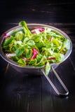 Salademengeling Stock Foto
