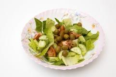 Saladeplaat Stock Fotografie