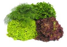 Salades fraîches Photos stock
