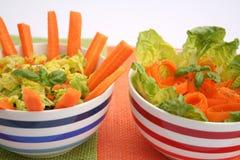 Salades fraîches Images libres de droits
