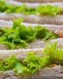 Saladesandwich Royalty-vrije Stock Afbeelding