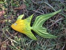 Saladevissen Stock Foto's