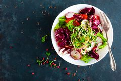 Saladier de légume frais des tomates, du mélange italien, du poivre, du radis, des pousses vertes et des graines de lin Plat végé photos libres de droits