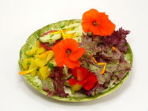 saladplate 免版税图库摄影
