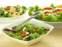 Salads Royalty Free Stock Photography