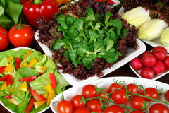 Salads. Stock Image