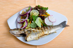 Salads And Grilled Fish Stock Images