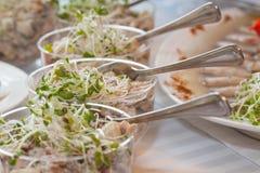 Salads closeup. A close up of bean sprout salads Royalty Free Stock Photos