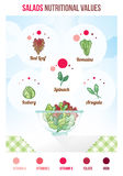 Salads nutritional values. With infographic, salad varieties and full bowl Royalty Free Stock Photography