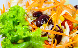 Salads, vegetables. Royalty Free Stock Photos