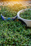 Salae & x28 freschi verdi; Kurreii Corner& x29 di Broussonetia; nel baske di bambù Fotografie Stock Libere da Diritti