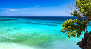 Salagdong Reef Royalty Free Stock Images