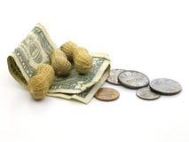 Salaires d'arachide Image stock