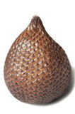 Salak Royalty Free Stock Photos