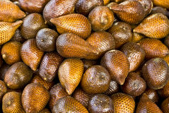 Salak Stock Photos