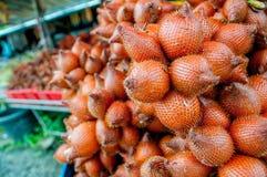 Salak Frucht Lizenzfreies Stockbild