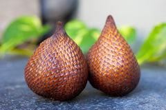 Salak fruit Royalty Free Stock Images