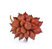 Salak fruit, Salacca zalacca isolated on white Stock Images