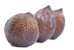 Salak Fruits Series 02 Stock Photography