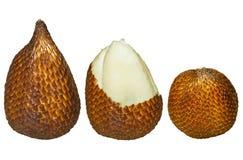 Salak, frutta isolata Immagine Stock