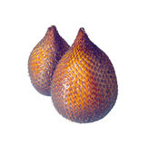 Salak (Salacca zalacca) - tropical, exotic fruit Stock Photography