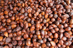Salak or snake fruit. Salak (Salacca zalacca) is a species of palm tree from Borneo Island. The fruit taste is usually sweet and acidic royalty free stock photography
