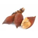 Salak snake fruit isolated on white background Stock Photos