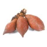 Salak snake fruit isolated on white background Royalty Free Stock Photo