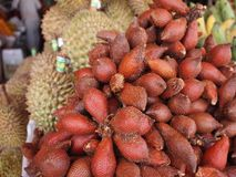 Salak or snake Fruit of Thailand. royalty free stock photos