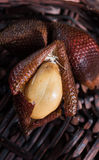Salak on wicker background Stock Image