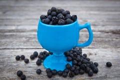 Salal莓果,白珠树shallon 免版税库存图片
