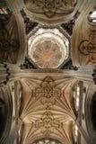 Salamanca Royalty Free Stock Photo