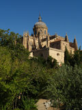 Salamanca. View on the cathedral of Salamanca Royalty Free Stock Images