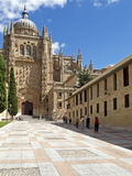 Salamanca. 's cathedral in spain Royalty Free Stock Photo