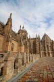 Salamanca Royaltyfri Foto