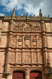 Salamanca. Details of the most famous places of Salamanca Royalty Free Stock Images