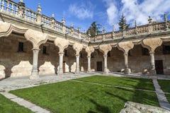 Salamanca Castilla Leon, Spanien royaltyfria foton