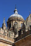 Salamanca cathedral Stock Images