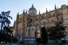 Salamanca Cathedral stock photo