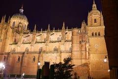 Salamanca Cathedral in Spain Via de la Plata Stock Photography