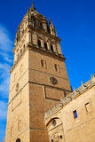 Salamanca Cathedral in Spain Stock Images