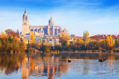 Salamanca Cathedral from Tormes River Royalty Free Stock Photos