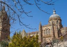 Salamanca Royaltyfri Bild