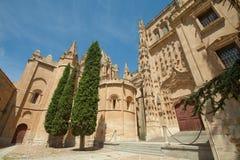 Salamanca - domkyrkorna Royaltyfri Fotografi